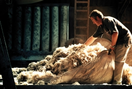 Wool Fleece's washing
