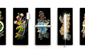 Deux nouvelles créations rejoignent le Fonds contemporain